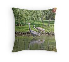 Sandhill Cranes Wading Throw Pillow