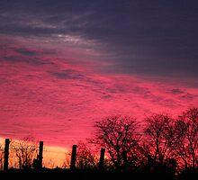 Patriotic Sunset by Rosanne Jordan