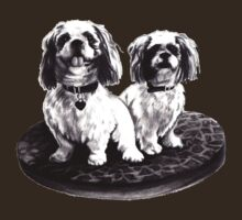 shih tzu dogs - clothing, stickers and iPhone case by Lauren Eldridge-Murray
