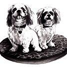 Shih tzu dogs - prints by Lauren Eldridge-Murray