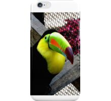 TOUCAN IMAGE 2 PUERTO RICO iPhone Case/Skin