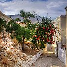 Halki Alleyways by Tom Gomez