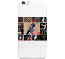 COLLAGE OF HUMMINGBIRDS #1 iPhone Case/Skin