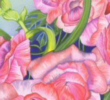 Begonia Beauty Sticker