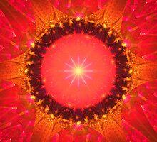 Radiance by Belinda Osgood