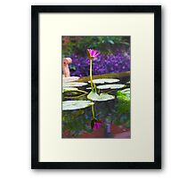 Reflection of a Pink Water Lily Framed Print