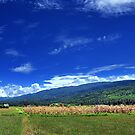 Blue Sky And The Hills by Komang