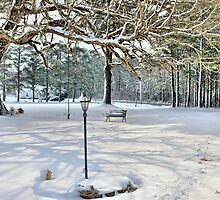 A Winter Snow by Jeff Ore
