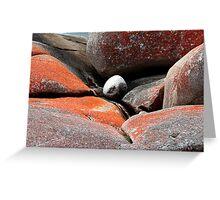 White rock Red rocks Greeting Card