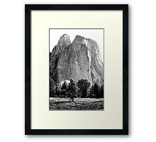 """""""Cathedral Rocks"""" Framed Print"""