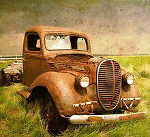 Two Ton Truck by Alyce Taylor