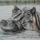 Hippo - tinted charcoal by gogston