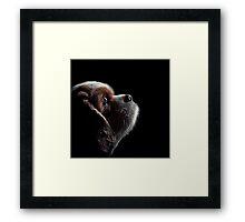 Pet Profile Framed Print