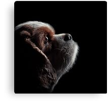 Pet Profile Canvas Print