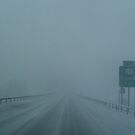 White Out on Highway 81.. by linmarie