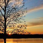 Arkansas Skies by KatillacPhotos