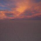 Salt flats at Sunset by Louise Crutchfield