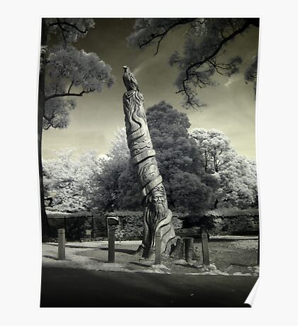 The Australiana Tree in Infrared Poster