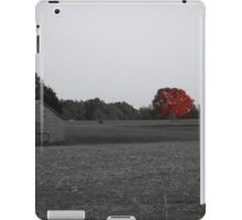 Red Simplicty iPad Case/Skin