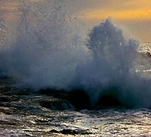 Southern Waves by Lee Harvey