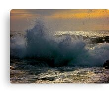 Wind in the Waves Canvas Print