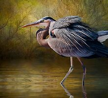 Heron Creek by Tarrby