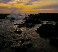 Ocean Spray by Shaynelee