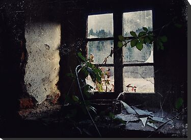 Window Of The Past by Mojca Savicki