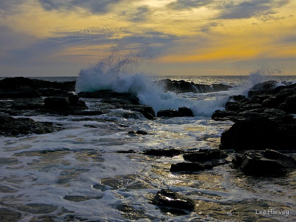 Ocean Wind and Light by Lee Harvey