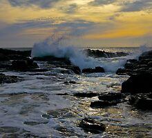 Ocean Wind and Light by Shaynelee