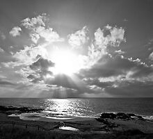 Sunbeams in Black and White - Bunbury 2012  by pennyswork
