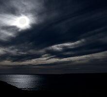 Blue Eyed Sky's White by Lee Harvey