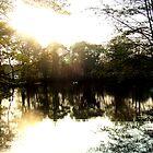 Shallowbrook Lake by BizarreBeff