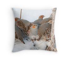 The Partridge Family Throw Pillow