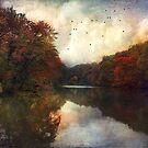 The old pond by John Rivera