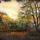 Lonely beautiful days by John Rivera