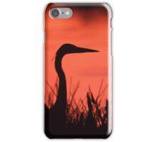 Heron Sunset iPhone Case/Skin