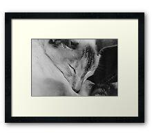 Just Millie Framed Print