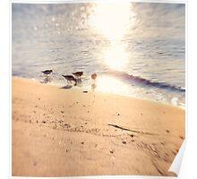 4 Little Birds Poster