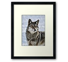 I See Breakfast Framed Print