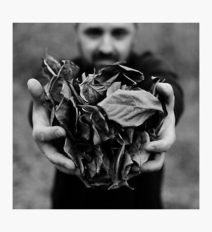 i give you leaves Photographic Print