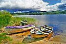 Loch Ard by Chris Cherry