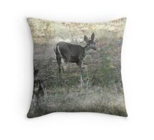 In the midst of winter there came a spring memory Throw Pillow