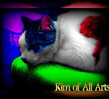 Purr-cadelic by Kimberly Darby