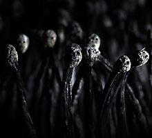 I see faces by vegard7