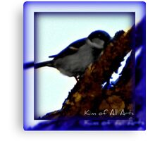 Blue Bird Aura (Bordered)  Canvas Print