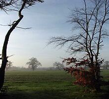 One Misty Morning in Essex by BlueMoonRose