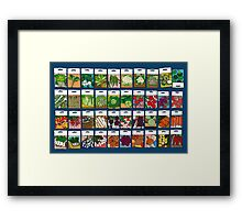 Vegetable seeds pattern Framed Print