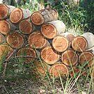 A Neighbour's Wood Pile by aussiebushstick