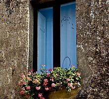 Erice Geranium Window by phil decocco